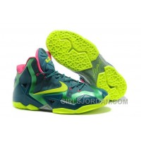 "Nike LeBron 11 ""T-Rex"" Mens Basketball Shoes Free Shipping"