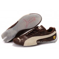 Men's Puma Ferrari In Brown/Beige Best