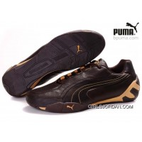 Puma Fluxion Shoes Brown/Gold 903 Lastest