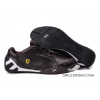 Puma Ferrari Scuderia Fluxion GT Brown/White Cheap To Buy