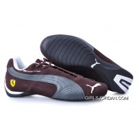 Puma BMW Shoes Brown/Silver/White New Release