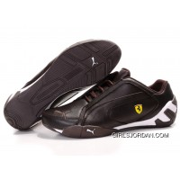 Mens Puma Trionfo Tour SF In Chocolate/White For Sale